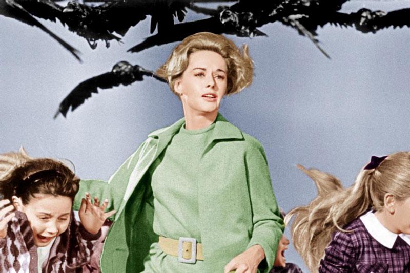 vintage-halloween-costume-tippi-hedren-birds
