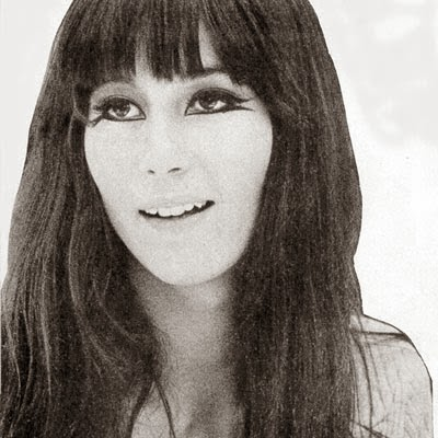 Style Icon 1960s Cher Bobby Pin Blog Vintage Hair And